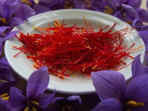 saffron real paella catering